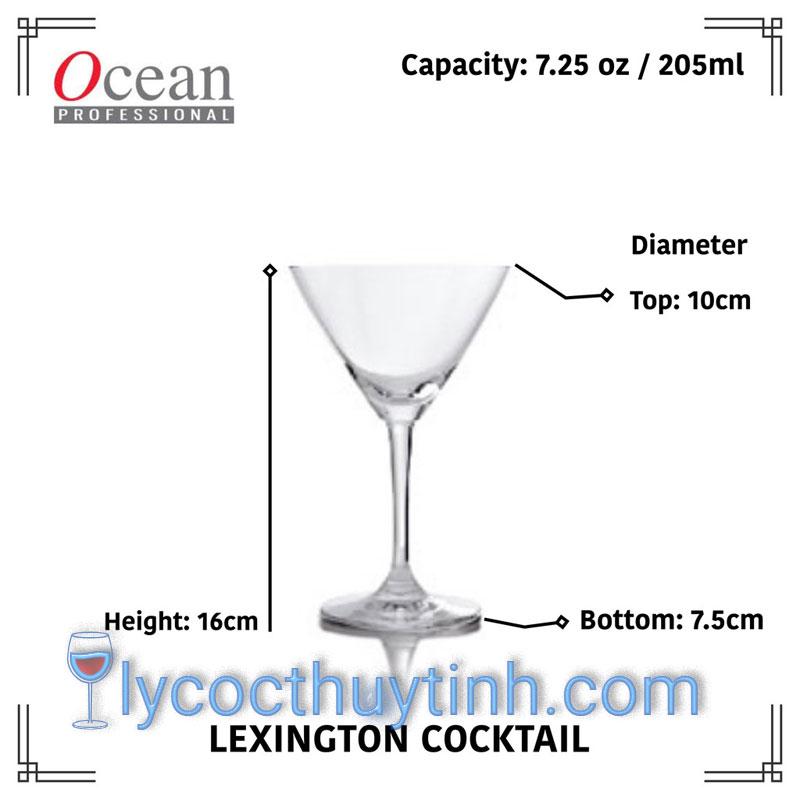 Ly-Thuy-Tinh-Lexington-Cocktail-1019C07-205ml-04