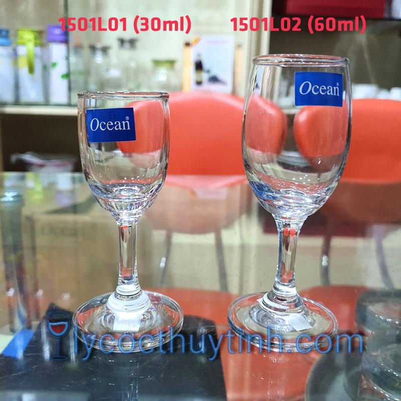bo-qua-tang-Ly-Thuy-Tinh-ocean-1501L02-1501L01-HD